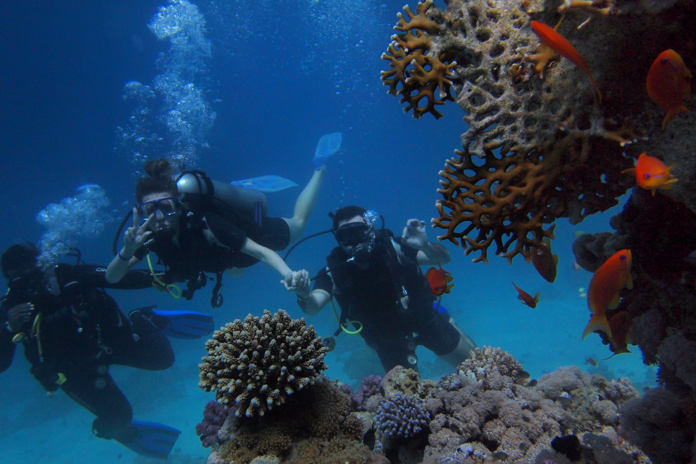 cabo-san-lucas-mexico-scuba-diving