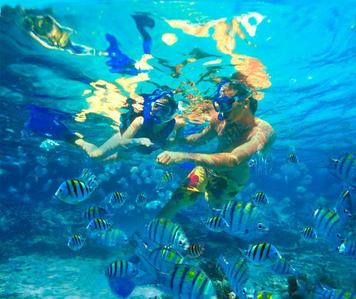 snorkel-cabo-pulmo