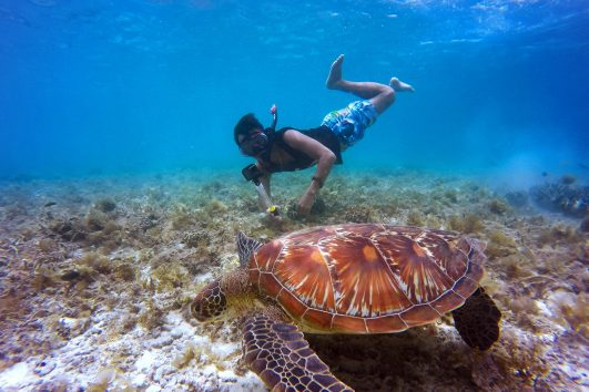 cabo-san-lucas-snorkeling-tour